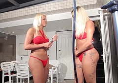 Doppelganger transsexuals get accessible for their scene